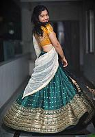 Beautiful-desi-lady-in-traditional-dress-26