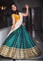 Beautiful-desi-lady-in-traditional-dress-28