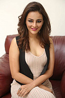 seerat-kapoor-photo-in-pink-7