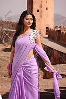 Sneha-Hot-in-Designer-Saree-3