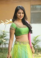 Nikita-Bisht-hot-navel-51