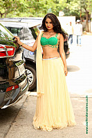 nikitha-pawar-hot-figure-in-choli-19