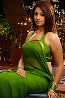 richa-gangopadhyay-exciting-beauty-12