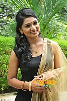 Sreelakshmi-Sreekumar-attractive-in-saree-6