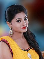 Sreelakshmi-Sreekumar-attractive-in-saree-7