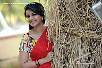 swathi-reddy-hot-glamorous-photo-269