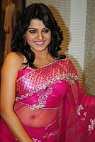 tashu kaushik hot saree 7