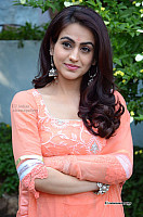 Aksha-Pardasany-glamorous-telugu-actress-photo-315