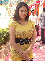 sherin-shringar-hot-glamorous-photo-22