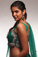 deeksha-seth-hot-in-saree-14