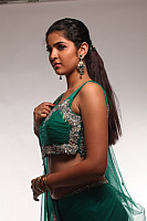 deeksha-seth-hot-in-saree-27