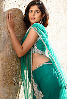 deeksha-seth-hot-in-saree-4